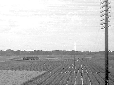 002-195503-shizuoka_sunen-fukuroi-002.jpg
