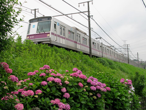011-tokyu-110616-metro8000.jpg