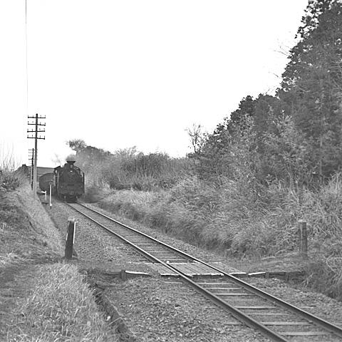 017B-196401-JNRsagamiline.jpg