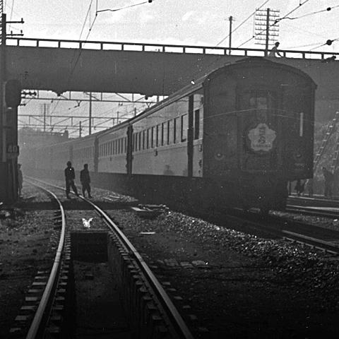 004-195503-sekigahara-sakura02.jpg