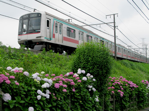 009-tokyu-110616-5000.jpg