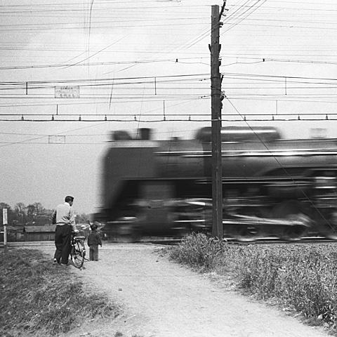 023A-195403-JNRhinkakuline-D52.jpg