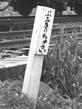 023B-196006-JNRjobanline-toride_fujishiro.jpg
