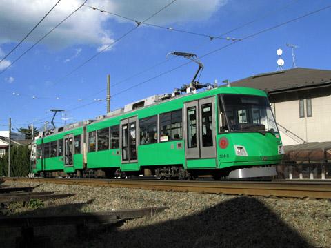 203-110117ode-green.jpg