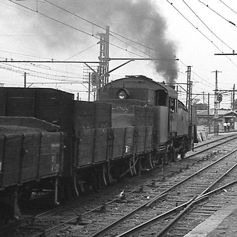 313-195408-nishiarai-c112.jpg